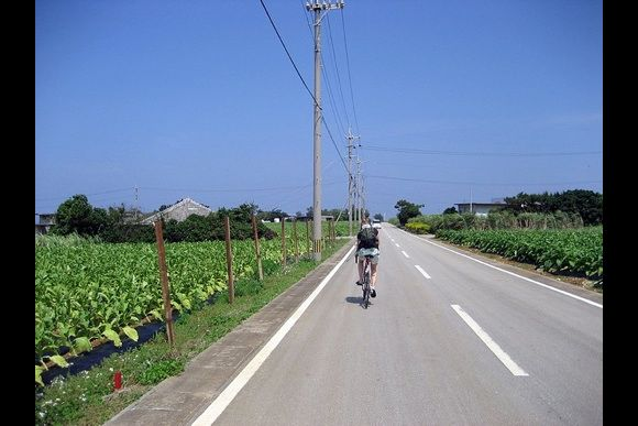 Cycling Okinawa - 0