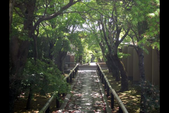 Join a Personalized Walking Tour in Kyoto, Nara - 0