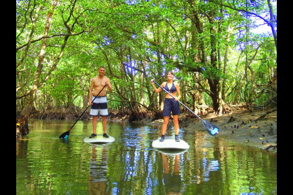 Explore Iriomote Island on a Stand Up Paddleboard!  - 0