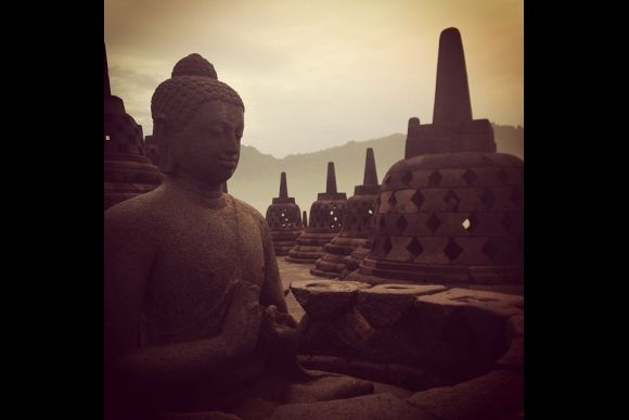 Yogyakarta Reptile Tour (2D/1N) - 0