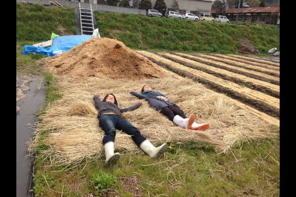 Experience Organic Farm in Osaka Countryside - 0