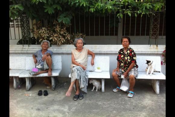 Feel Bangkok's Diversity & Harmony  through a Walking Tour - 0