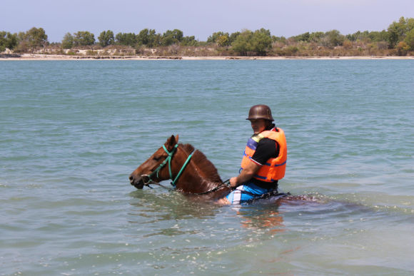 Go Horse Riding into the Sea and Swim with the horses - 0