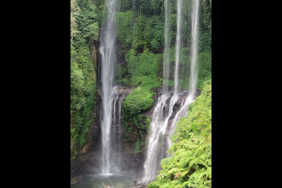 Visit the Sekumpul waterfalls - Bali's most beautiful falls! - 0