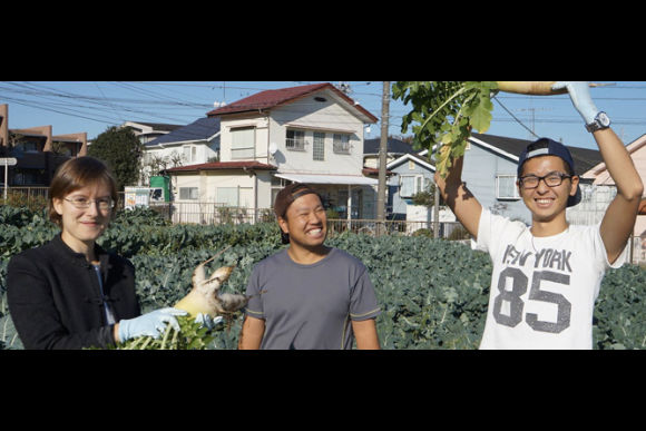 Experience Harvesting and Farm Work in Tokyo! - 0