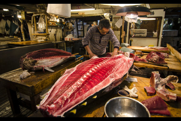 Join a Tsukiji Fish Market tour with an entertaining guide! - 0