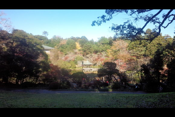 Experience Chiba prefecture like a local on a day tour! - 0