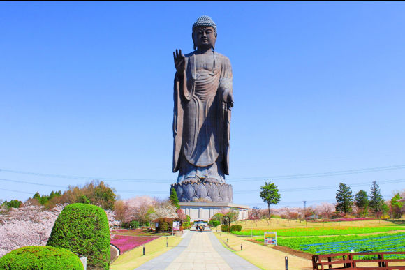 Visit Ushiku Daibutsu and enjoy shopping in Ibaraki! - 0