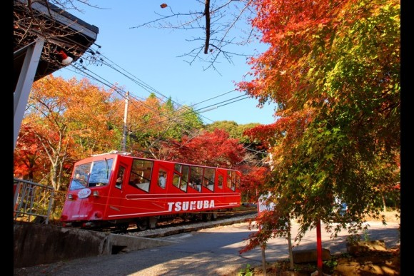 Visit a dignified shrine and explore Mt Tsukuba - 0