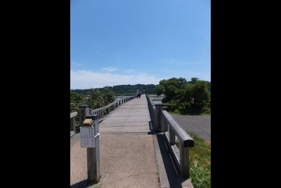 Time slip to the Edo period with a local tour in Shizuoka - 0