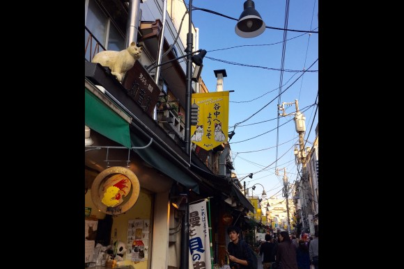 Take a walk in Yanaka area & discover local food! - 0