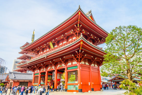Enjoy Half Day Bus Tour Around Best Tourist Spots in Tokyo! - 0