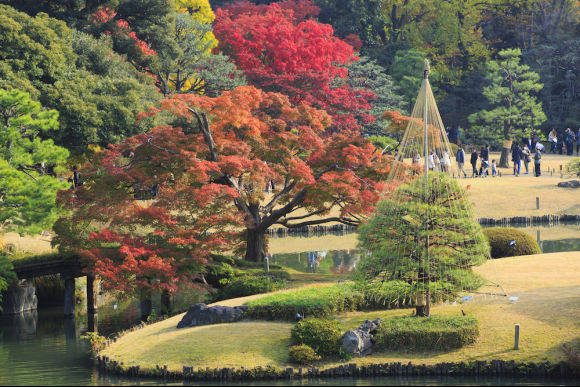 1 Day Autumn Leaf Hunting Walking Tour in Tokyo! - 0