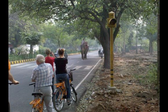 The Raj Tour: A Breathtaking Ride of Old and New Delhi - 3