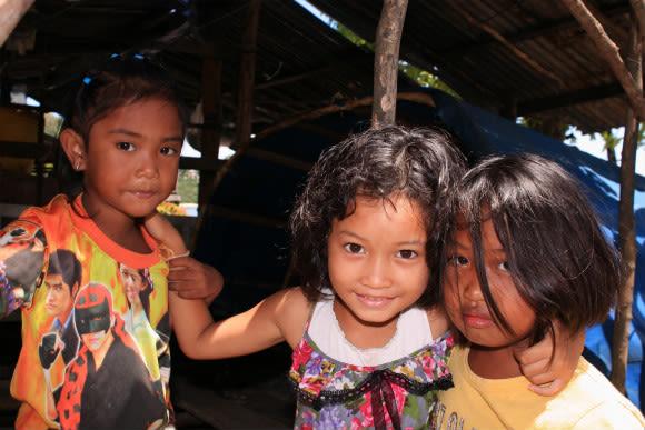 Meet Phuket's inhabitants  - 0