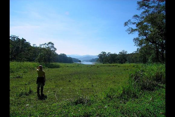 Explore the Indian Jungle and Stay with a Rural Family - 0
