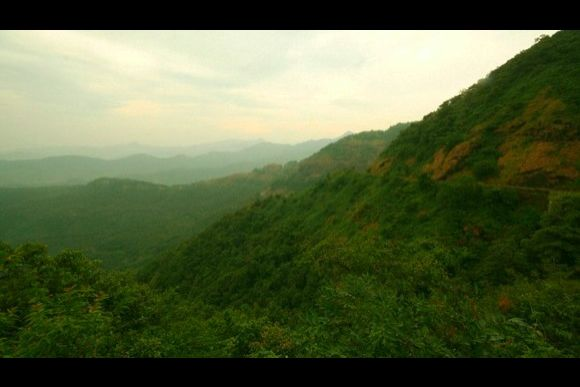 Explore the Indian Jungle and Stay with a Rural Family - 3