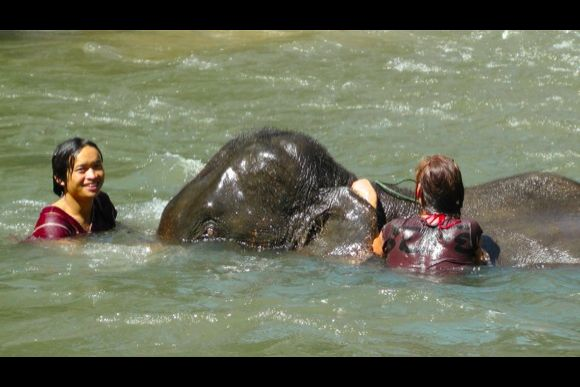 Experience traditional elephant riding with Mahouts - 1