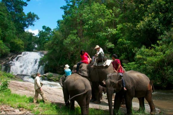 Experience traditional elephant riding with Mahouts - 3
