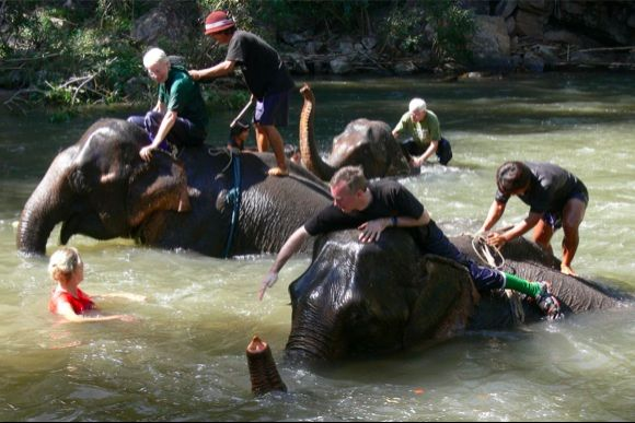 Experience traditional elephant riding with Mahouts - 4