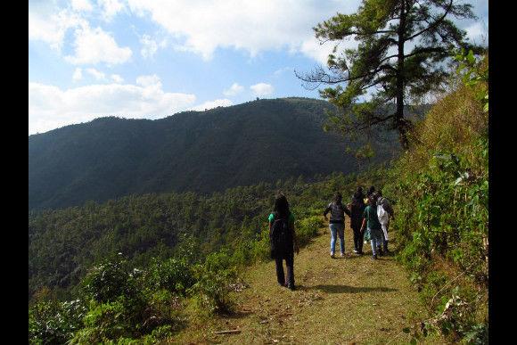 Trek through the Sacred Forests of Meghalaya - 0
