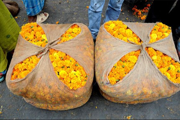 (The disappeared) Flower Markets of Delhi   - 0
