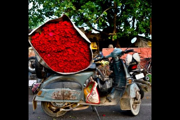 (The disappeared) Flower Markets of Delhi   - 1