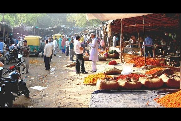 (The disappeared) Flower Markets of Delhi   - 3