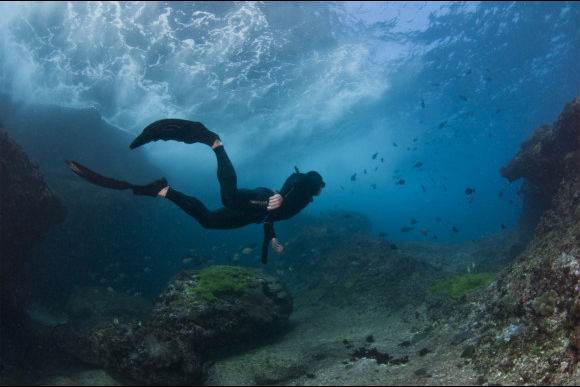 Introduction to Freediving: Fusion Snorkeller - 0