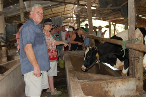 Go on a farming trip and visit the Cu Chi Tunnels - 2