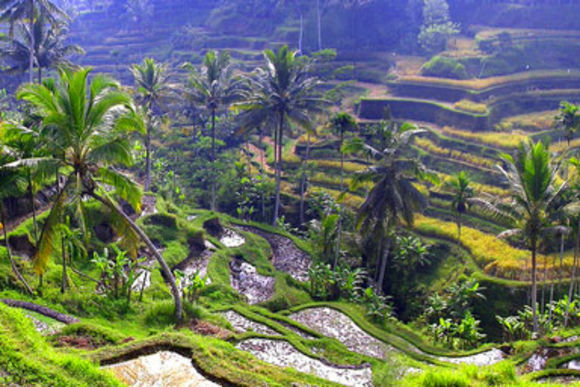 Explore the Wonders of the Central Eastern Region of Bali - 1