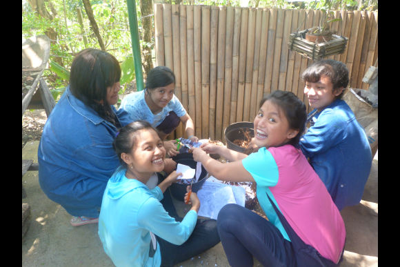 Learn about Sustainable Permaculture Practices in Bali - 0