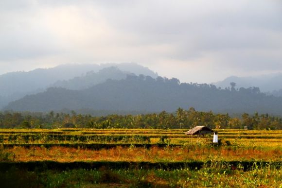 Explore the Wonders of the Central Eastern Region of Bali - 3