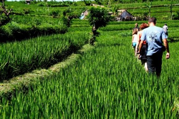 Explore the Wonders of the Central Eastern Region of Bali - 5
