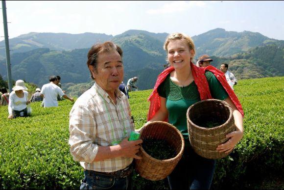 Visit an Organic Tea Farm in Japan (5-hour tour) - 0