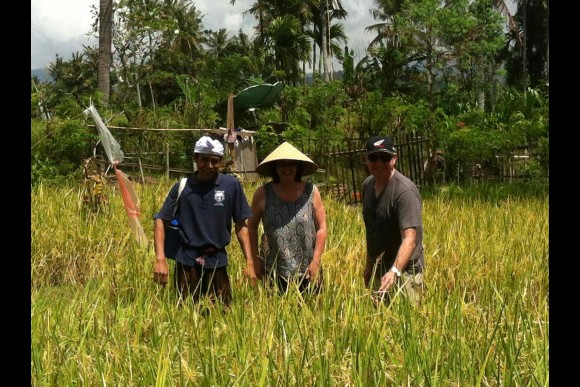 A day in the life of a Balinese farmer - 0