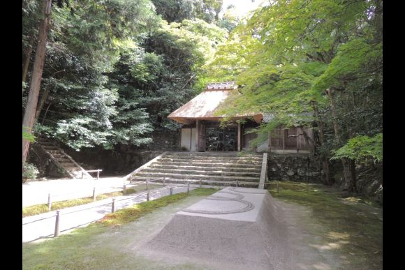 Explore Nature and the Small Streets of Kyoto - Private Tour - 0