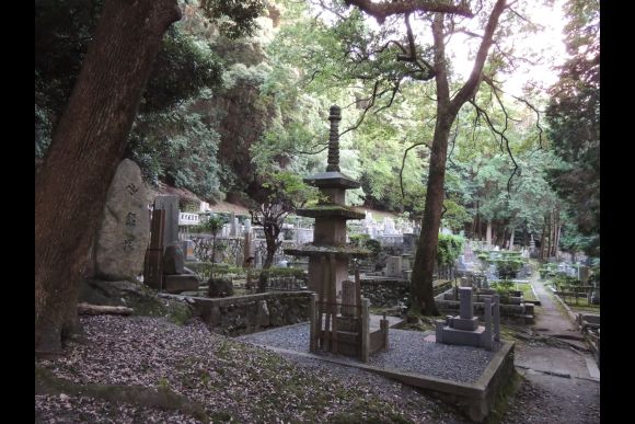 Explore Nature and the Small Streets of Kyoto - Private Tour - 1