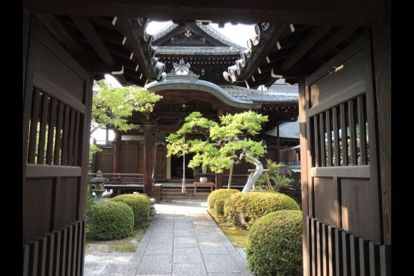 Explore Nature and the Small Streets of Kyoto - Private Tour - 4
