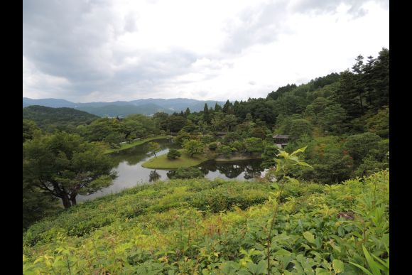 Explore Nature and the Small Streets of Kyoto - Private Tour - 5