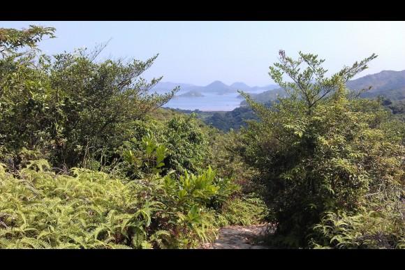 Visit Remote Hong Kong: Plover Cove Country Park - 0