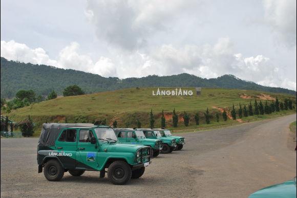 See the Slow Loris in its Natural Habitat - Rural Da Lat - 4