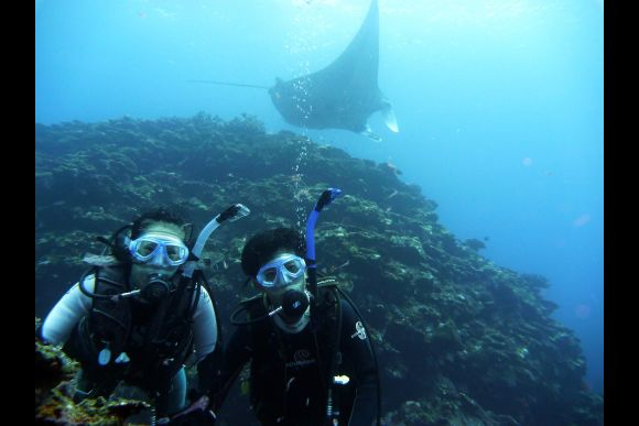 Try an Introduction Diving Course! - in Ishigaki Island - 0