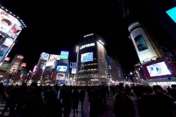 Sakura Night Illumination Tour - 2