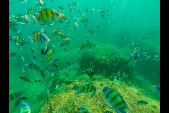 Experience Deep Water Solo Within a Secluded Lagoon - 5