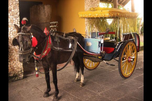Enjoy a Romantic Sunset Horse-Drawn Bendi Ride - 2