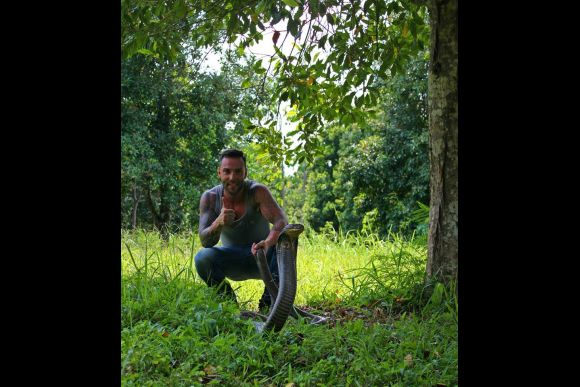 Trek to Search for King Cobras and Other Wildlife (2D/1N) - 1