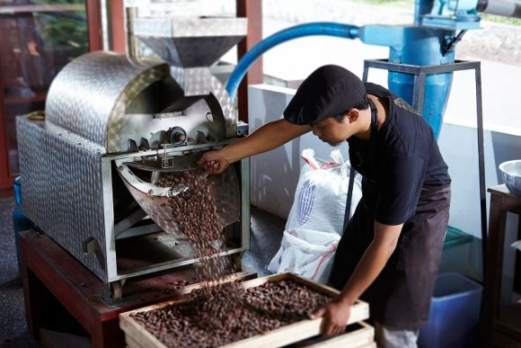 Tour the Pod Chocolate Factory and Learn to Make Chocolate - 0