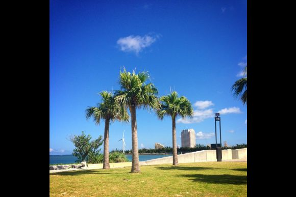 Enjoy a BBQ Party by the Beach in Okinawa!  - 0
