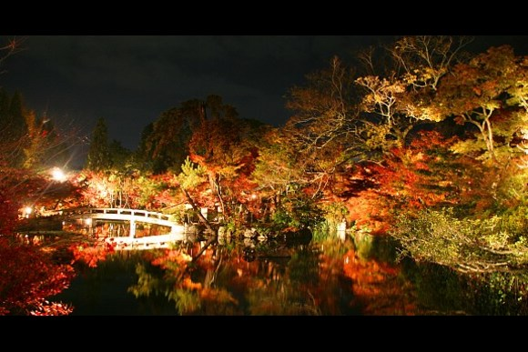 Be Amazed, Enjoy the Red Leaves of Kyoto! - 0
